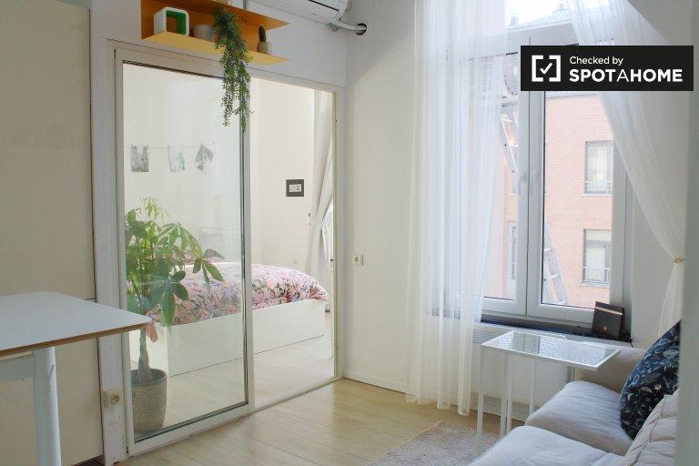 Encantador apartamento de 1 dormitorio en alquiler, centro, Bruselas