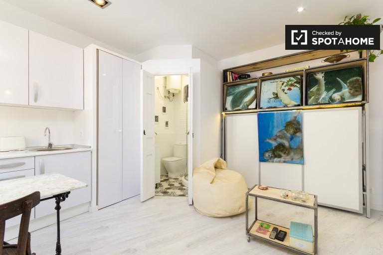 Monolocale con aria condizionata in affitto a Lavapiés, Madrid