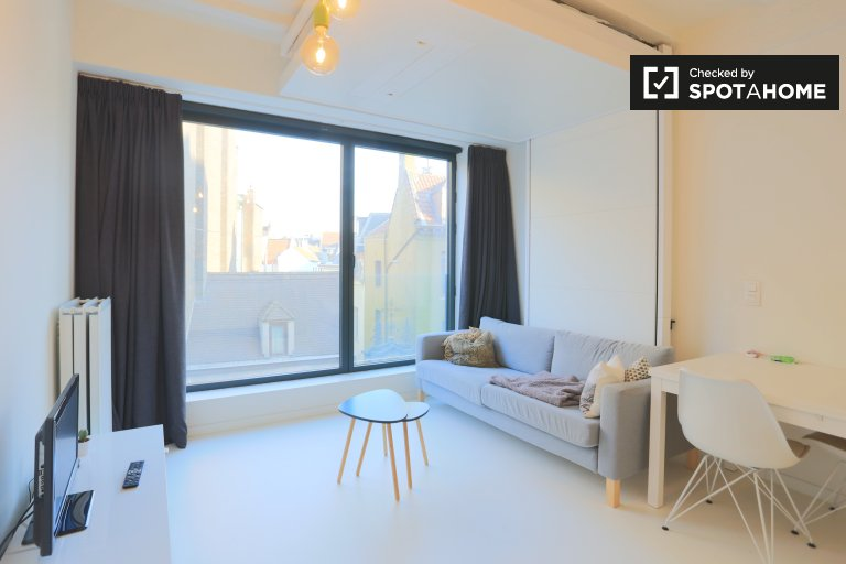 Compact studio apartment for rent in Brussels city center