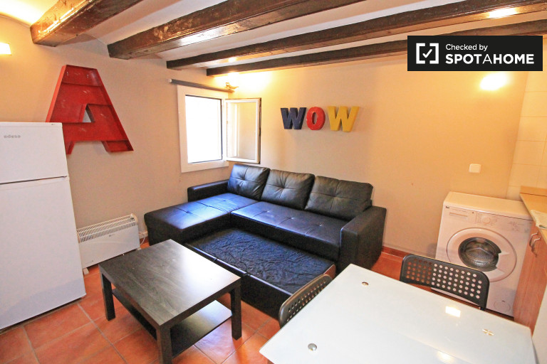 Comfortable studio apartment for rent in El Raval, close to Las Ramblas