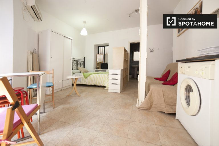 Spacious and bright studio apartment for rent in Centro near Las Setas
