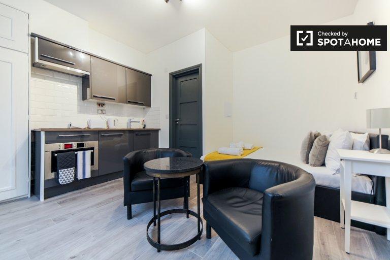 Londra, Hammersmith ve Fulham'da kiralık modern stüdyo daire
