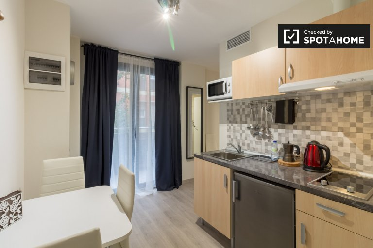 Modern studio apartment for rent, Sants, Barcelona
