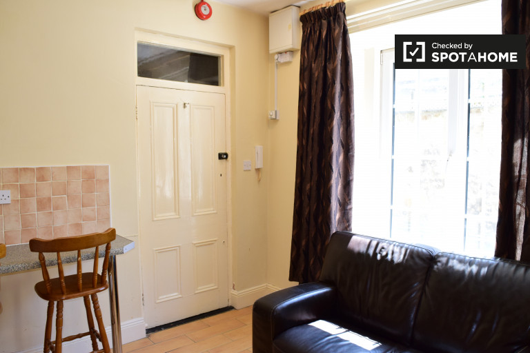 Nice and bright 1-bedroom apartment in Terenure