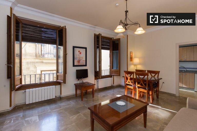 Spacious 1-bedroom apartment for rent in Realejo, Granada