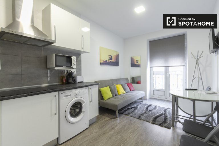 Tidy studio apartment for rent in Lavapies, Madrid