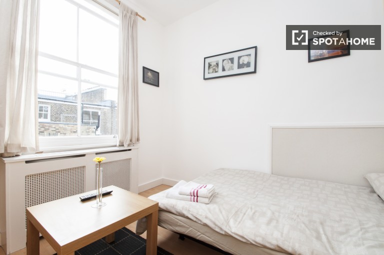 Ensoleillé Studio avec laveuse et sécheuse à Fulham, Londres