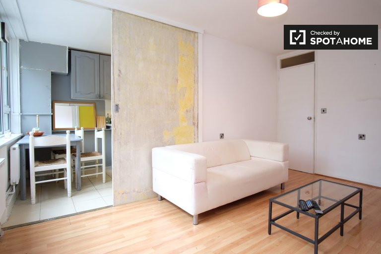 Modern 1-bedroom apartment for rent in Lambeth, Travelcard zone 2
