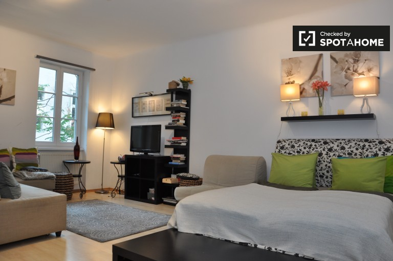 Modern and cosy studio apartment for rent in Margareten