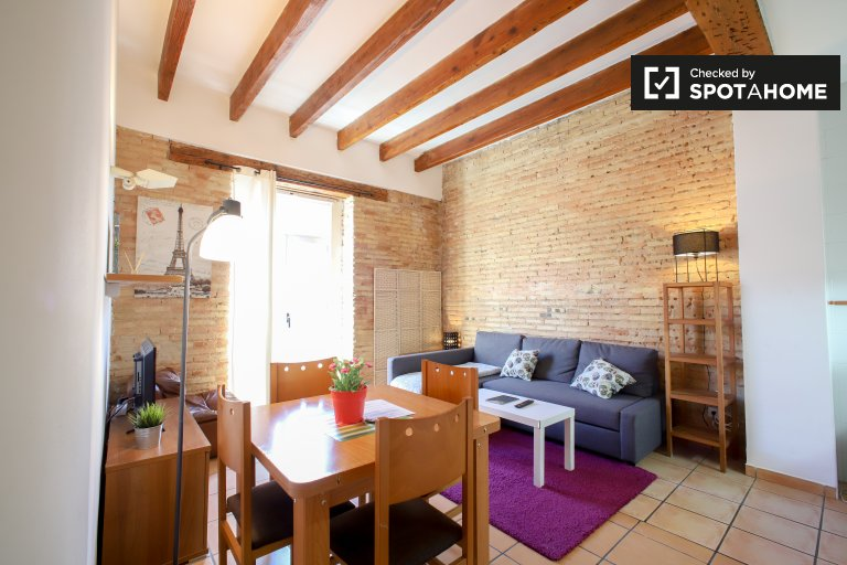 Modern 1-bedroom apartment for rent in Extramurs, Valencia