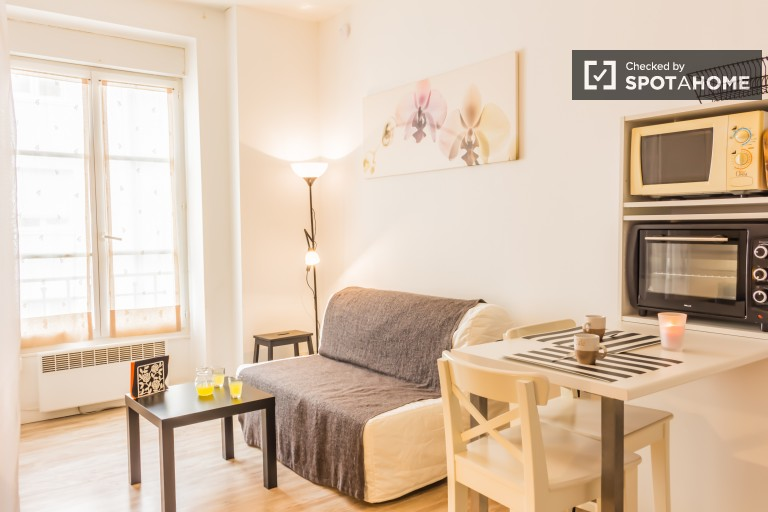 Comfortable 21m2 studio apartment for rent in well-connected Le Bachut