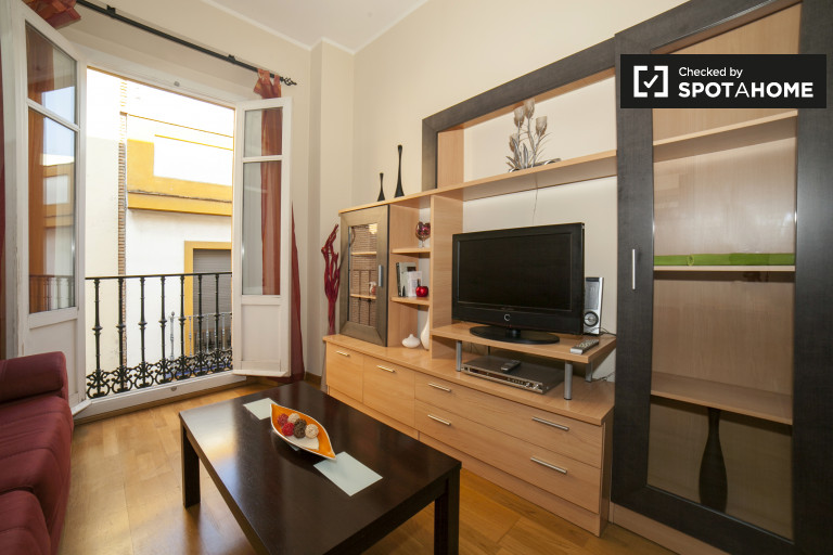 Modern 1-bedroom apartment for rent in San Vicente