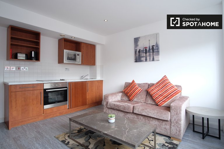 Modern 1-bedroom flat to rent in Chelsea, London
