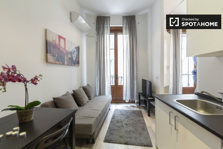 Stylish 1-bedroom apartment for rent in Madrid Centro