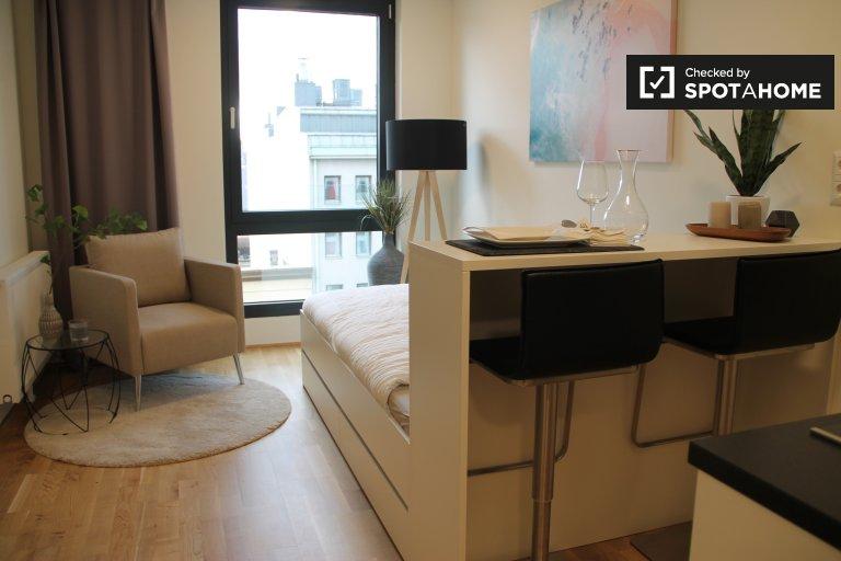 Nice studio apartment for rent in Brigittenau, Vienna