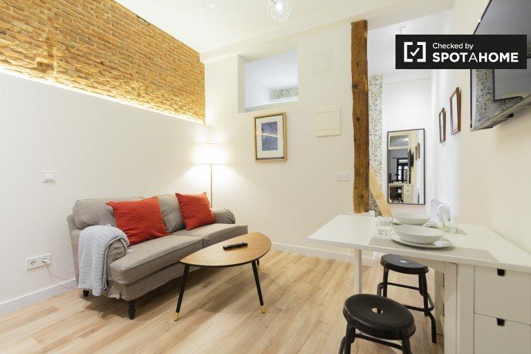 Ordentliches Studio-Apartment zur Miete in Malasaña, Madrid
