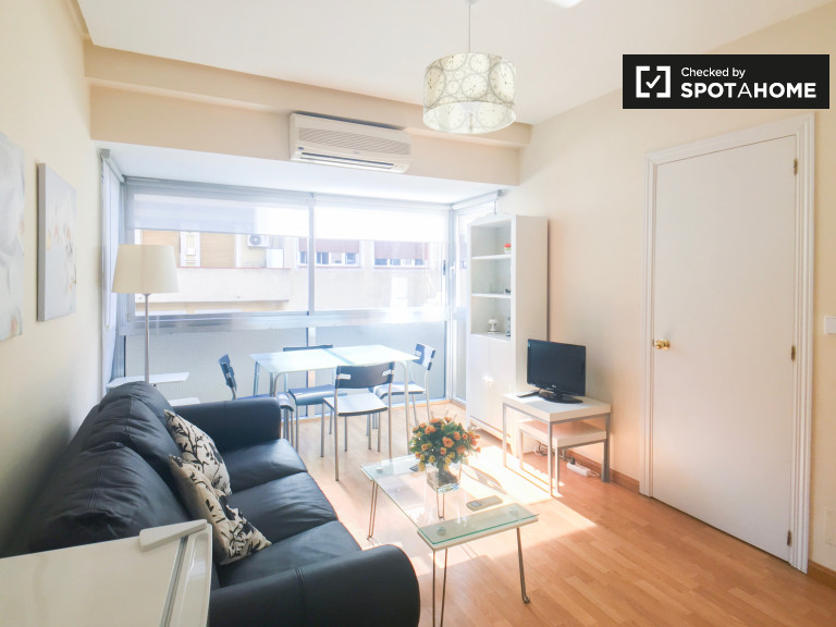 Spacious and bright 1-bedroom apartment with AC for rent in Salamanca