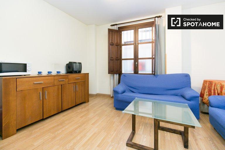 Quaint and bright 1-bedroom apartment for rent near Campo del Príncipe