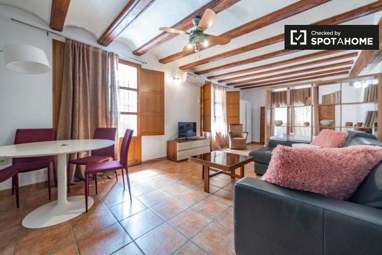 Stylish studio apartment for rent in Ciutat Vella, Valencia