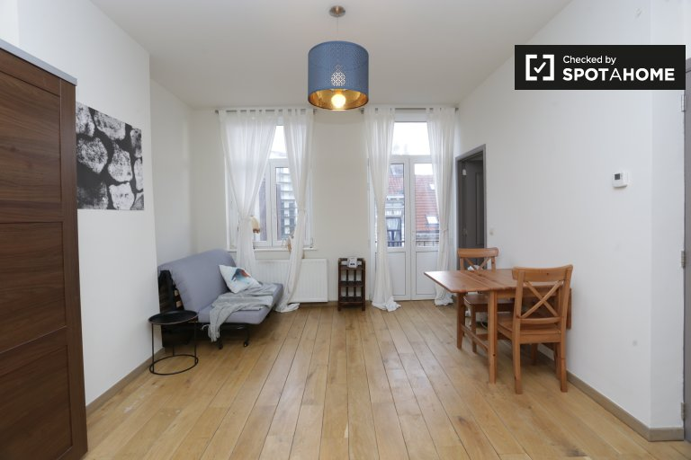 Cool 1-bedroom apartment for rent in Ixelles, Brussels