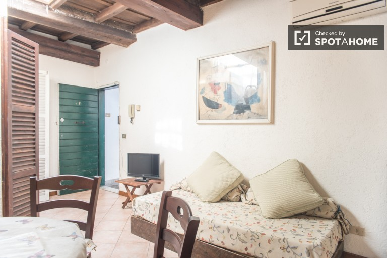 Cosy 1-bedroom apartment with AC to rent in Trastevere area