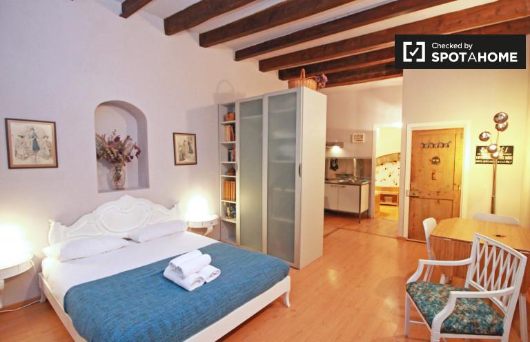 Appartement rénové studio à louer à El Born, Barcelone