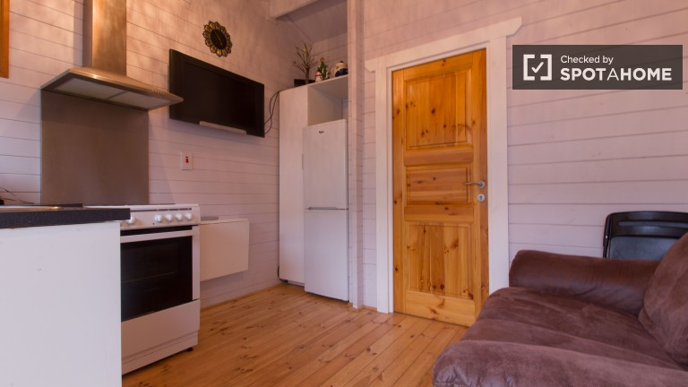 Charming 1 Bedroom Cabin with Skylight for Rent in Dublin
