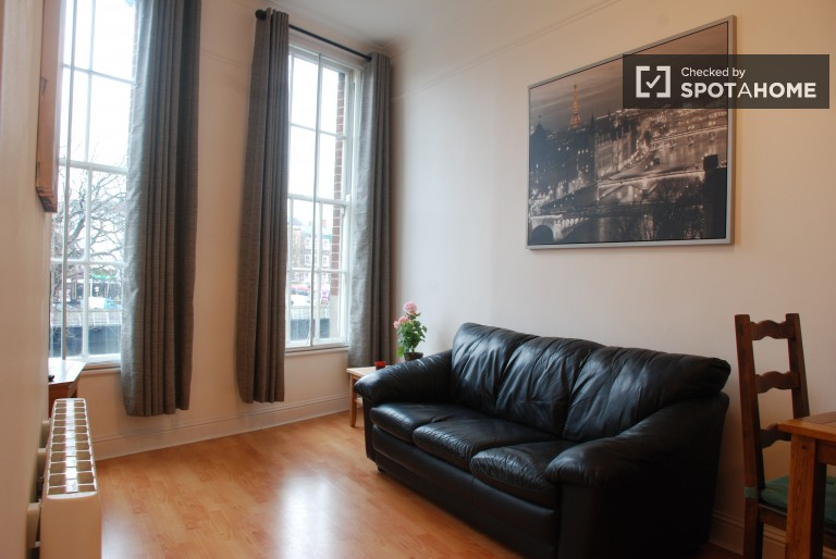 Brand New 1 Bed Flat for Rent in Dublin City Centre