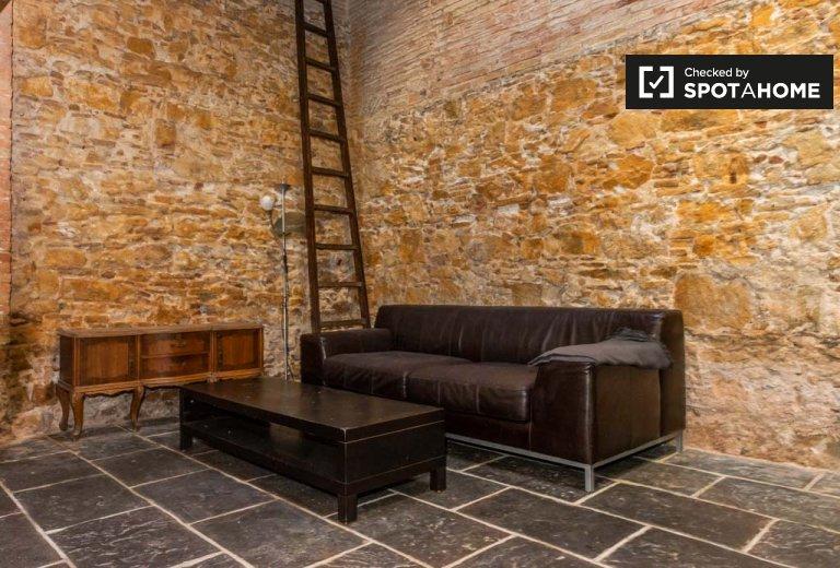 3-Zimmer-Wohnung zur Miete in El Raval, Barcelona